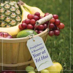 Tel Hai Annual Report